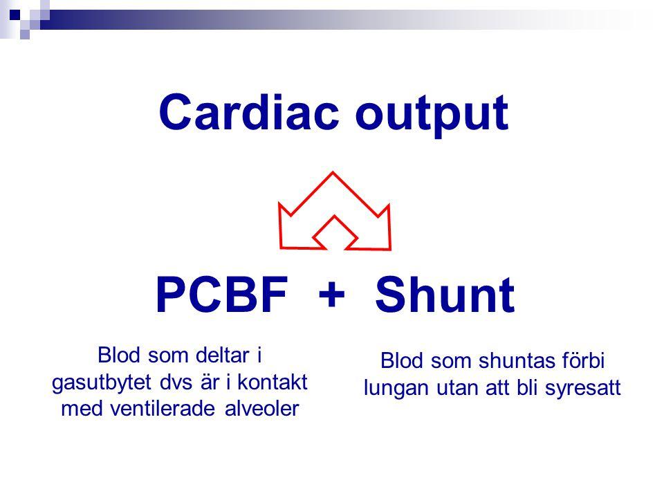 Cardiac output PCBF + Shunt