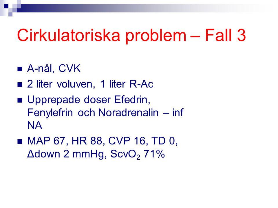 Cirkulatoriska problem – Fall 3
