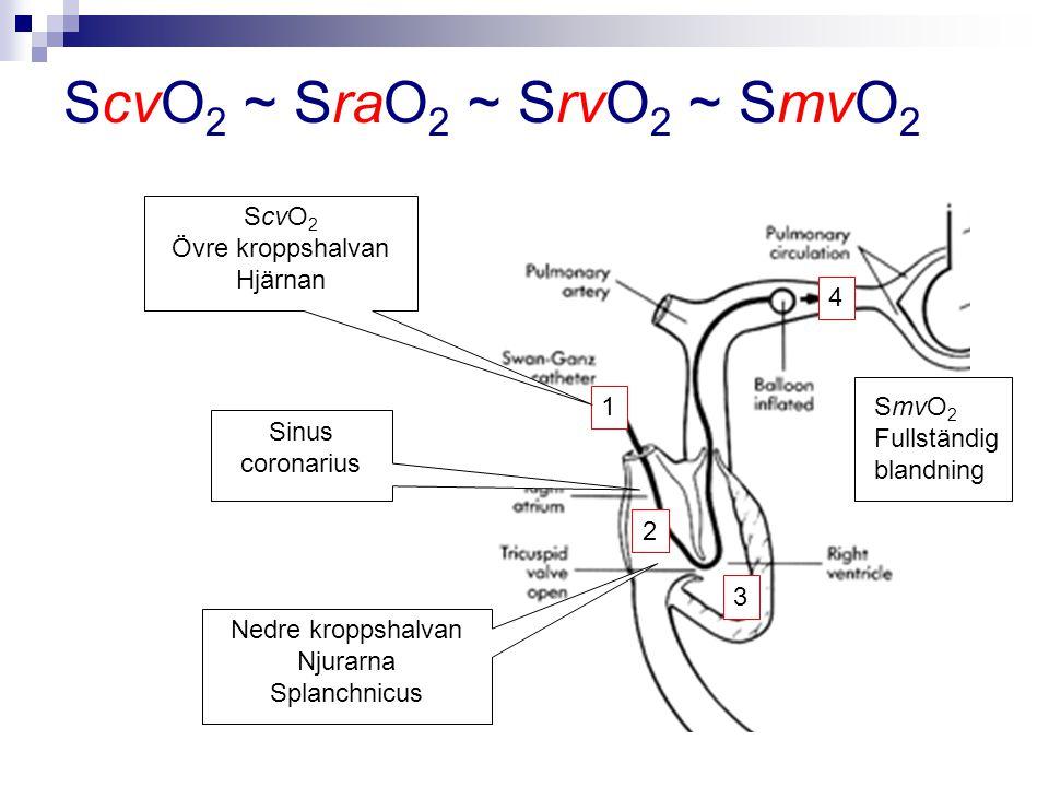 ScvO2 ~ SraO2 ~ SrvO2 ~ SmvO2 ScvO2 Övre kroppshalvan Hjärnan 4 1