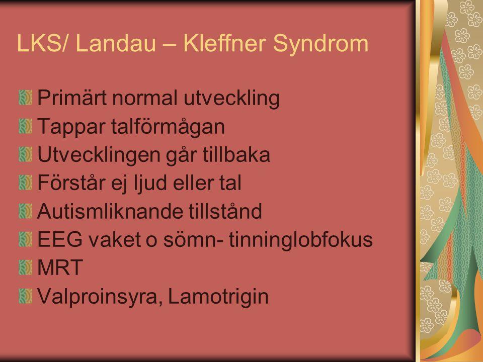 LKS/ Landau – Kleffner Syndrom