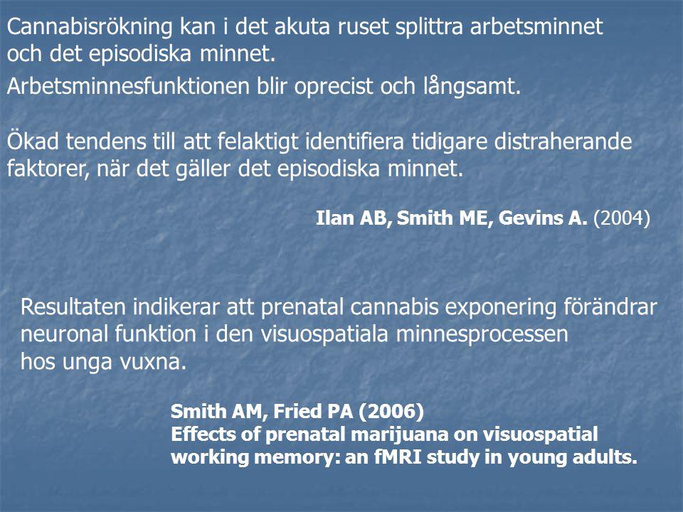 Cannabisrökning kan i det akuta ruset splittra arbetsminnet