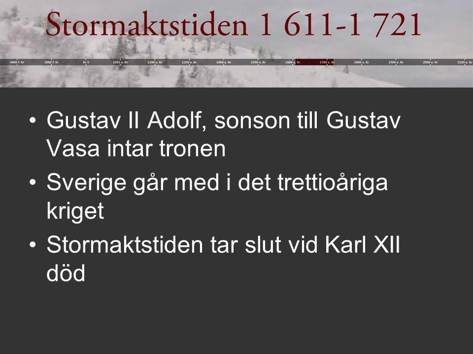 Gustav II Adolf, sonson till Gustav Vasa intar tronen