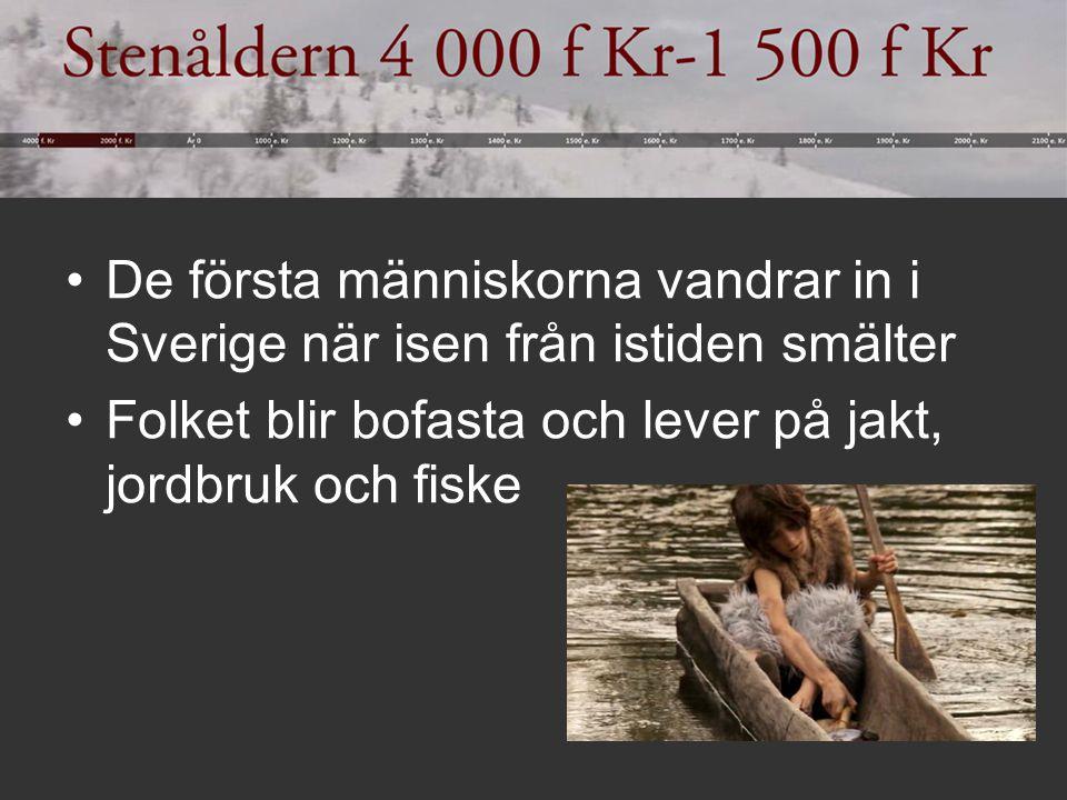 De första människorna vandrar in i Sverige när isen från istiden smälter