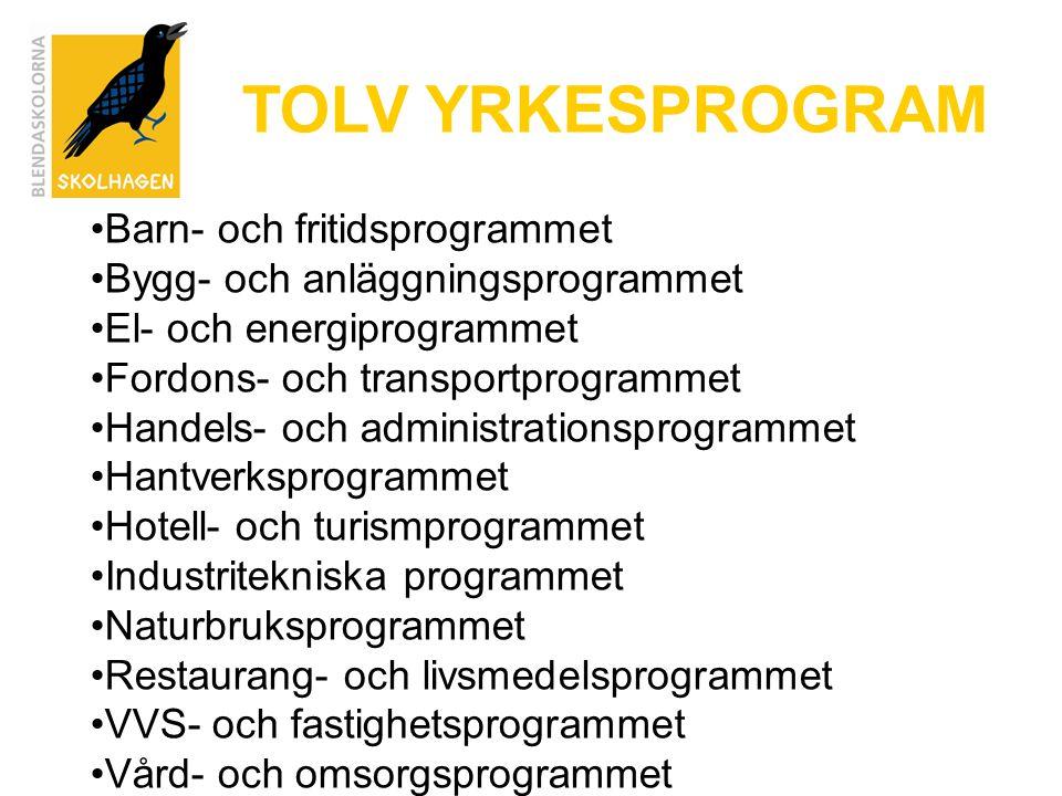 TOLV YRKESPROGRAM Barn- och fritidsprogrammet