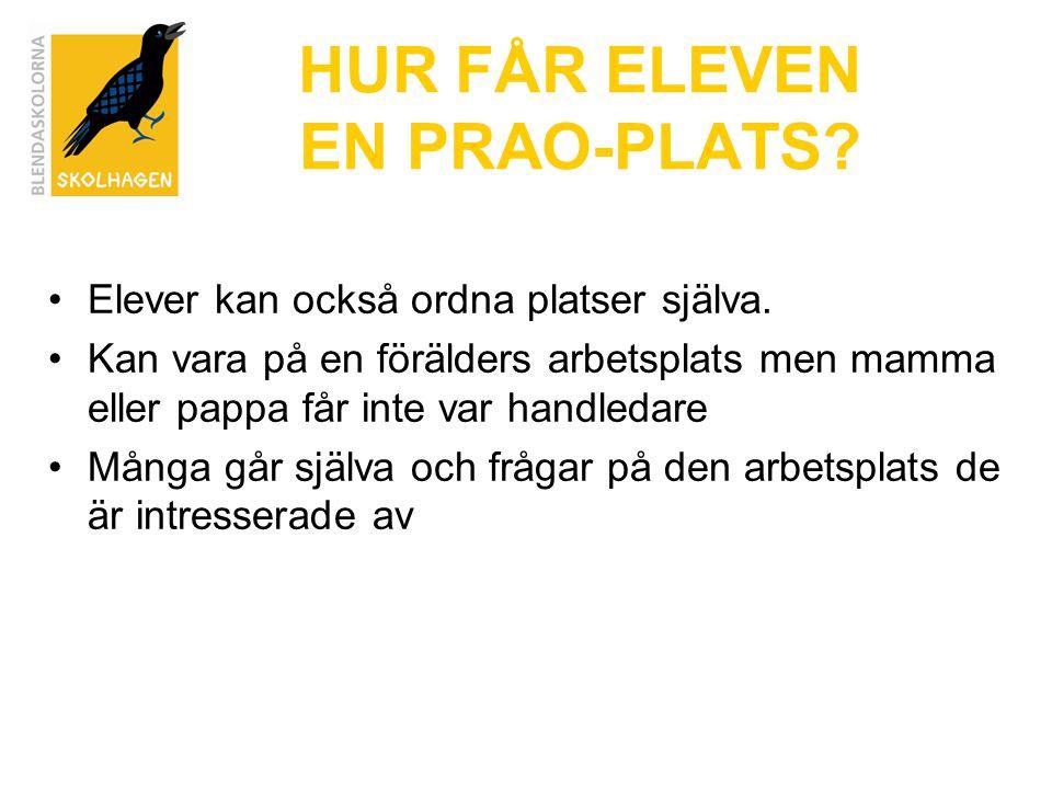 HUR FÅR ELEVEN EN PRAO-PLATS