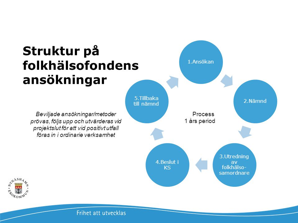 Struktur på folkhälsofondens ansökningar