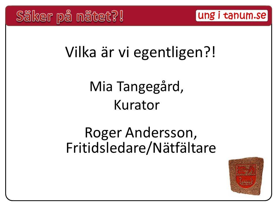 Roger Andersson, Fritidsledare/Nätfältare