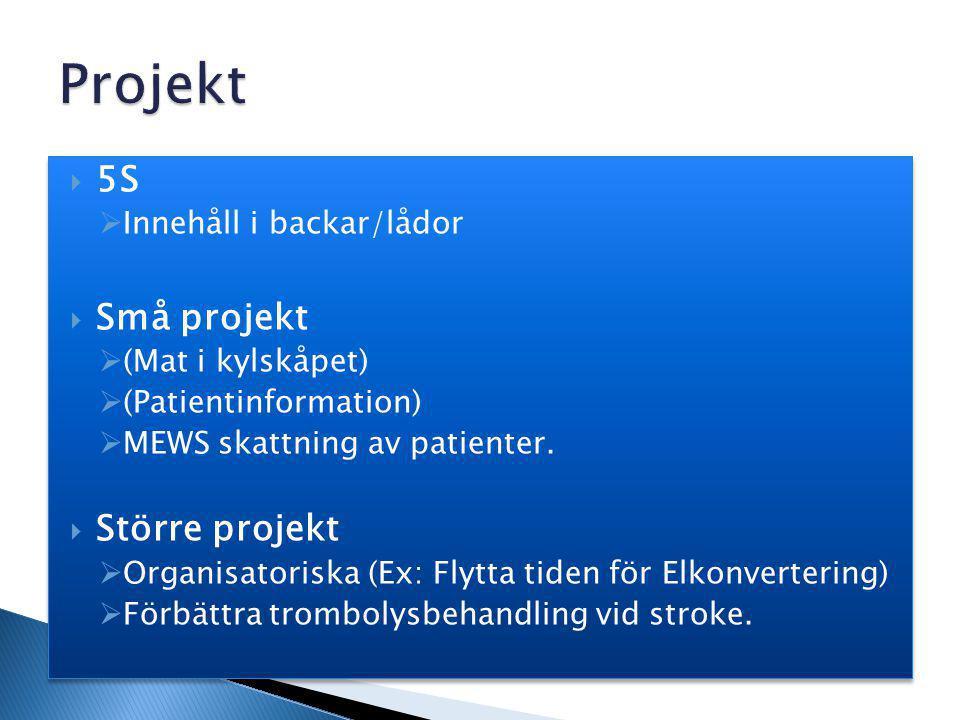 Projekt 5S Små projekt Större projekt Innehåll i backar/lådor