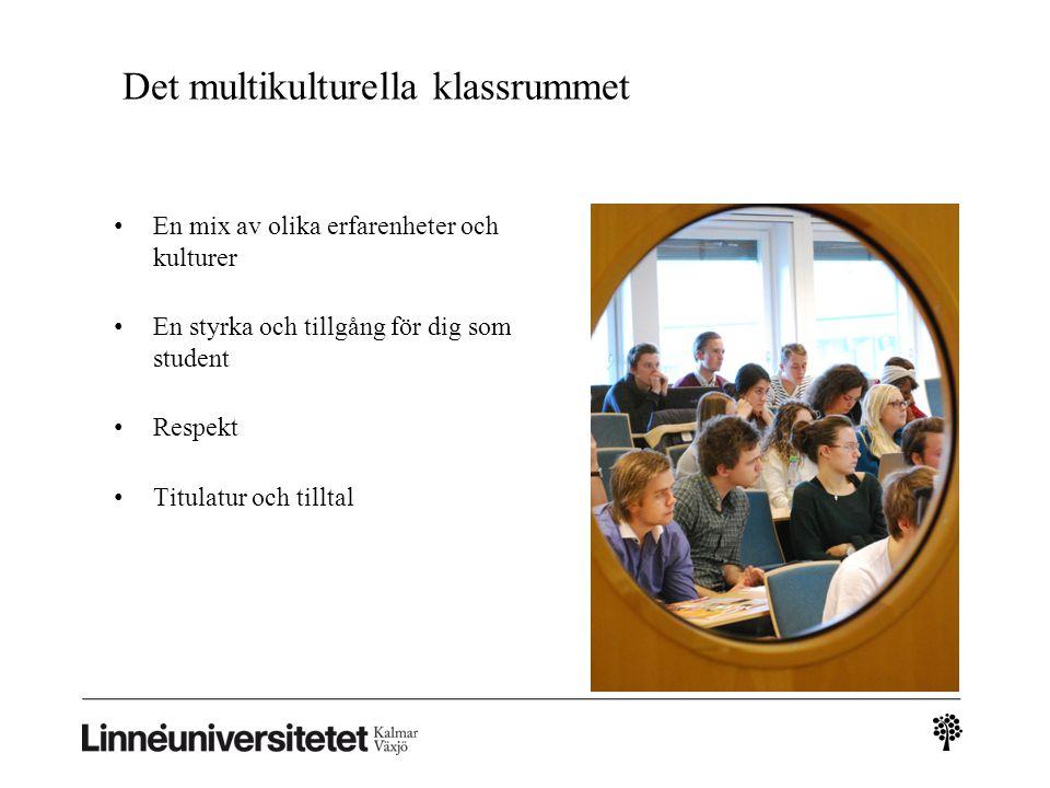 Det multikulturella klassrummet