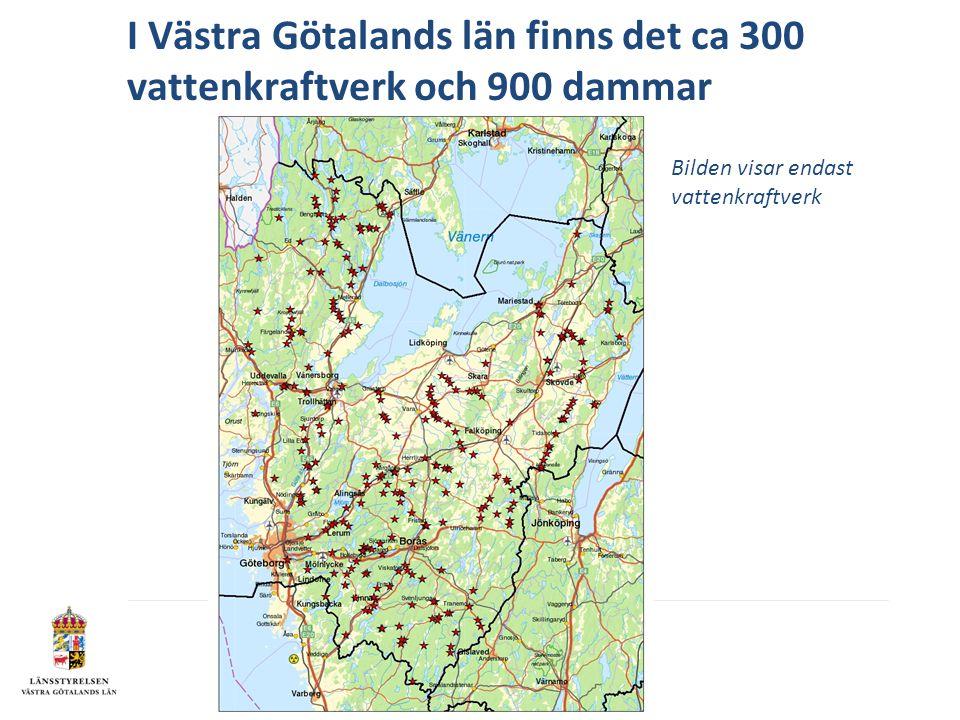 I Västra Götalands län finns det ca 300 vattenkraftverk och 900 dammar