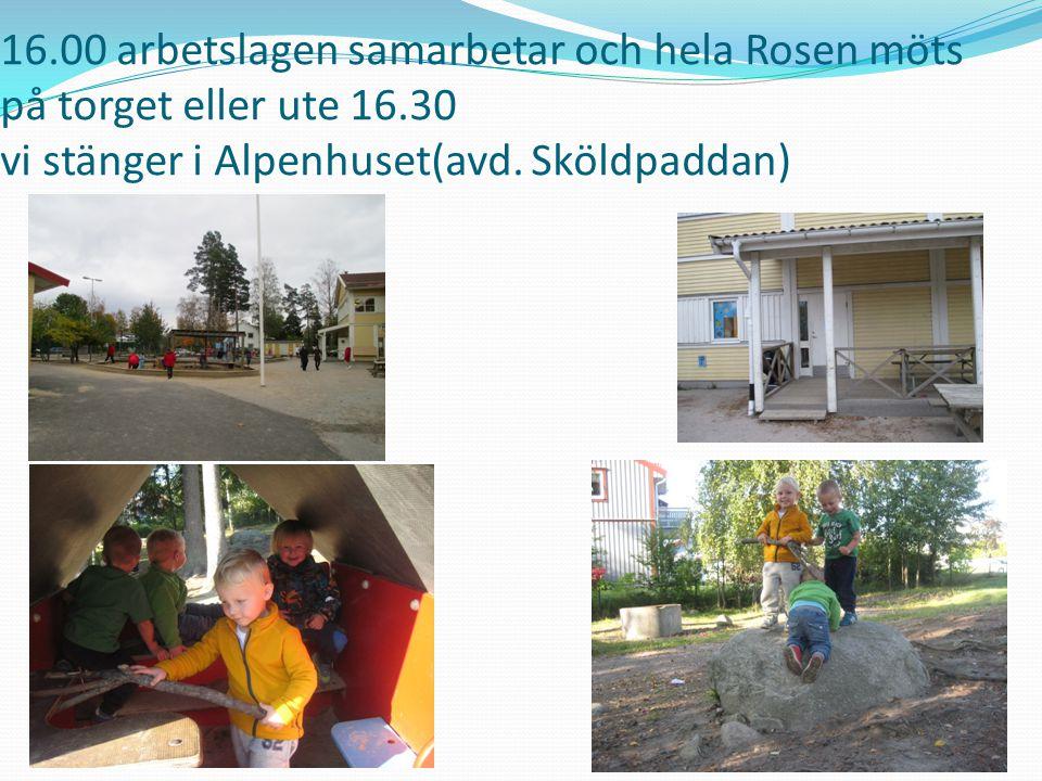16.00 arbetslagen samarbetar och hela Rosen möts på torget eller ute 16.30 vi stänger i Alpenhuset(avd.