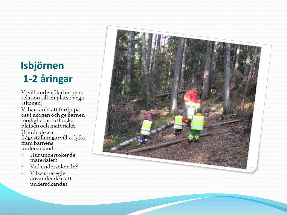 Isbjörnen 1-2 åringar Vi vill undersöka barnens relation till en plats i Vega (skogen)