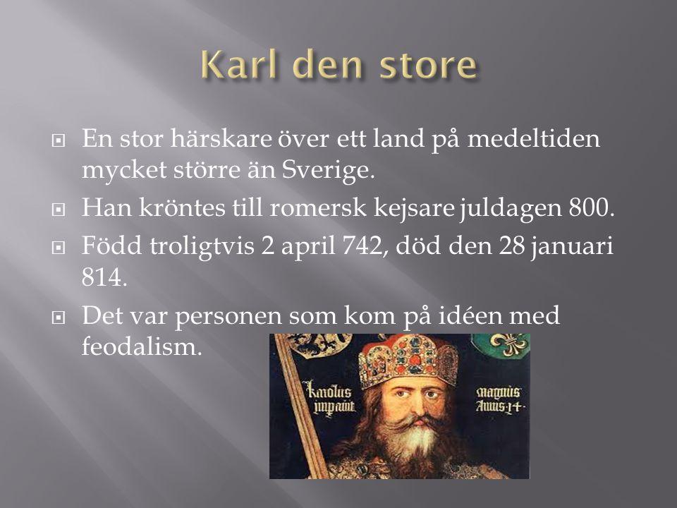Karl den store En stor härskare över ett land på medeltiden mycket större än Sverige. Han kröntes till romersk kejsare juldagen 800.