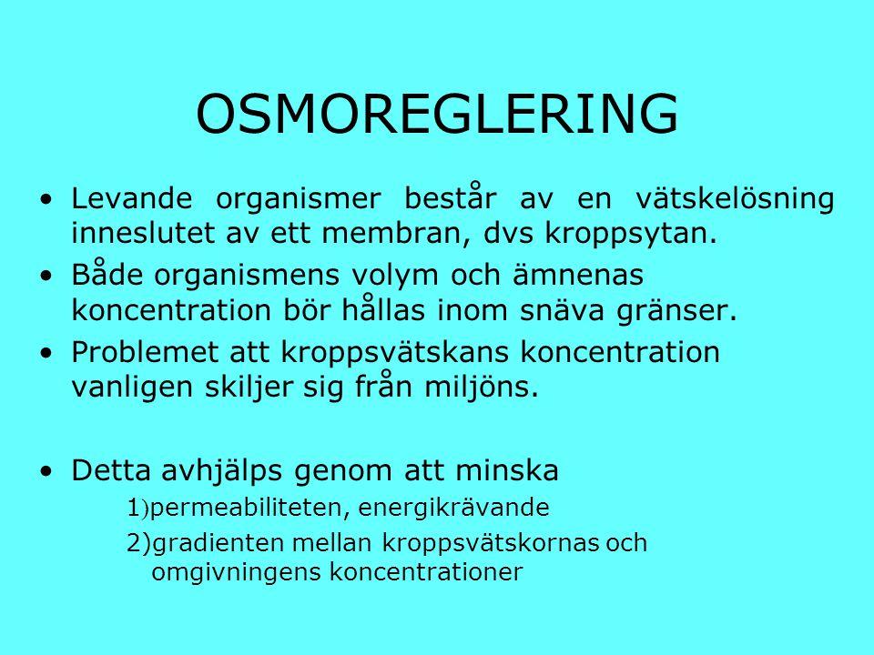 OSMOREGLERING Levande organismer består av en vätskelösning inneslutet av ett membran, dvs kroppsytan.
