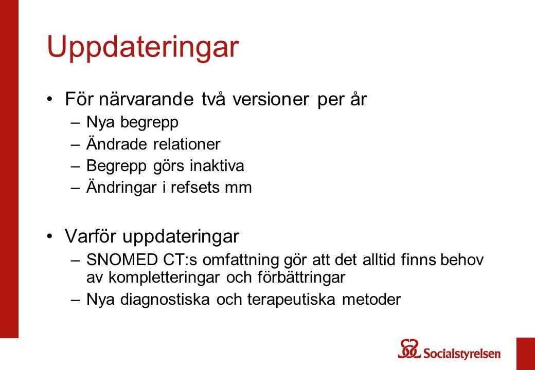 Uppdateringar För närvarande två versioner per år Varför uppdateringar