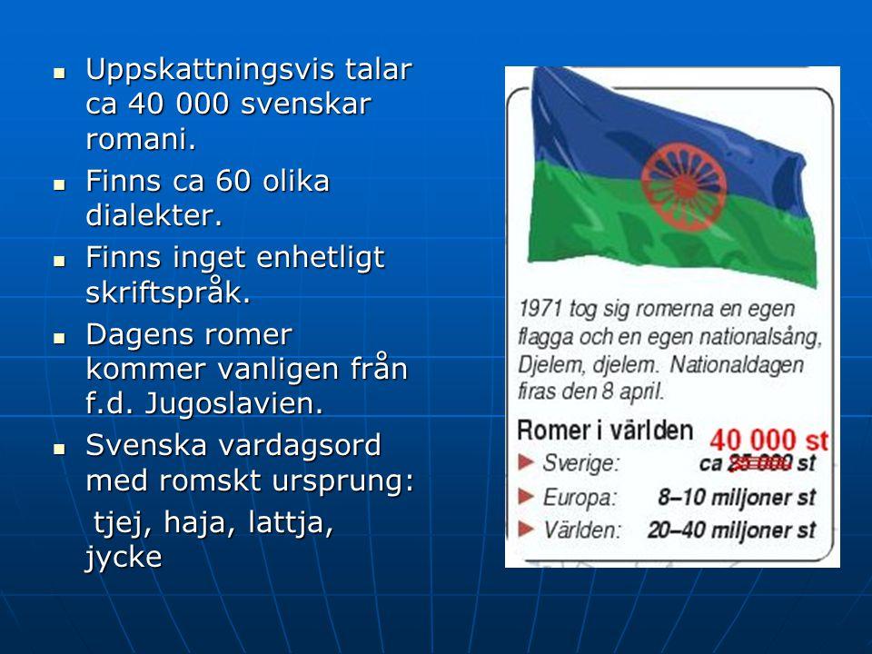 Uppskattningsvis talar ca 40 000 svenskar romani.