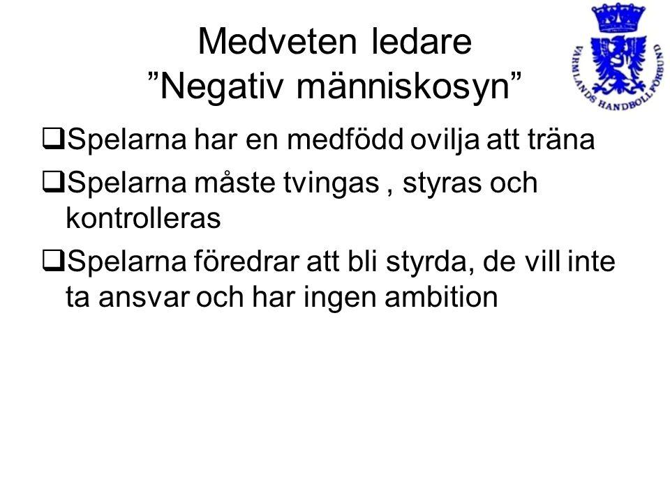 Medveten ledare Negativ människosyn