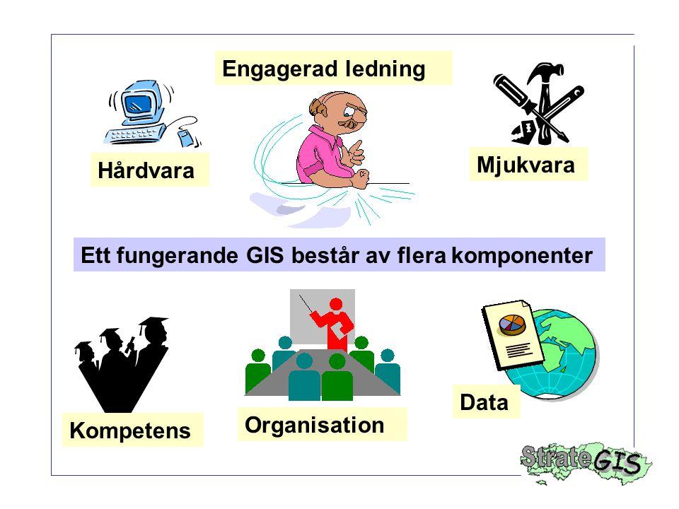 Engagerad ledning Mjukvara. Hårdvara. Ett fungerande GIS består av flera komponenter. Data. Organisation.