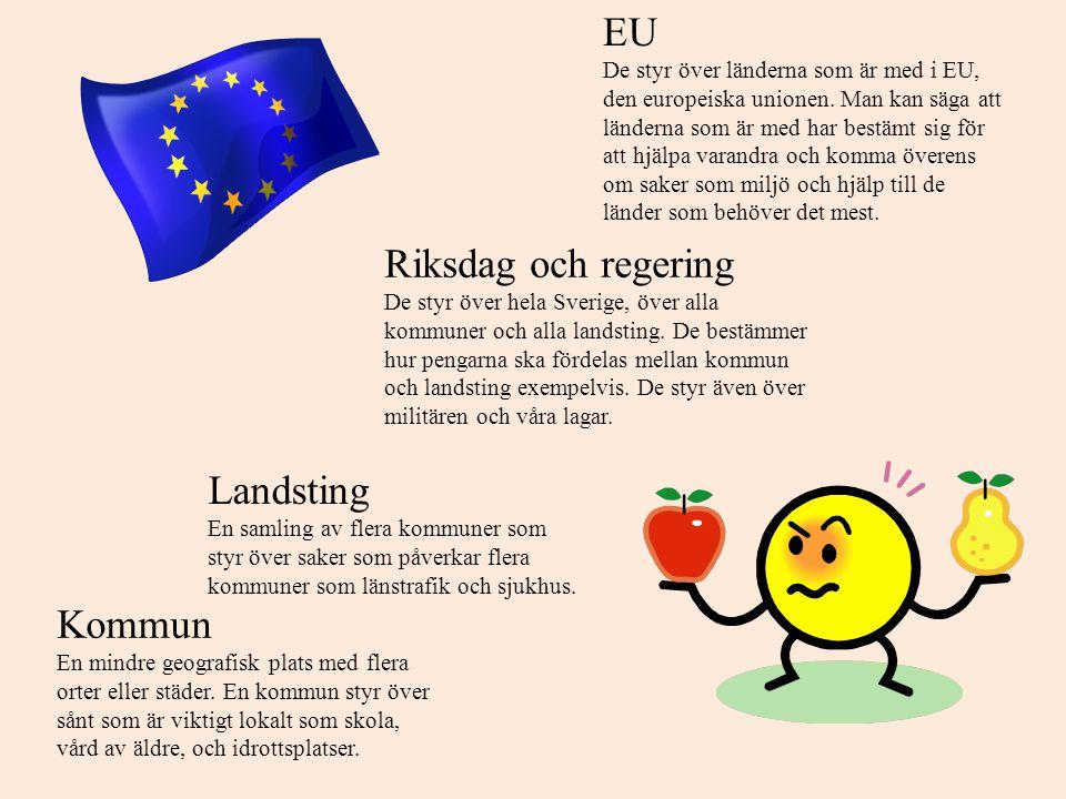 EU Riksdag och regering Landsting Kommun