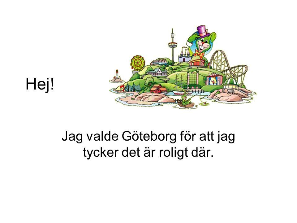 Jag valde Göteborg för att jag tycker det är roligt där.