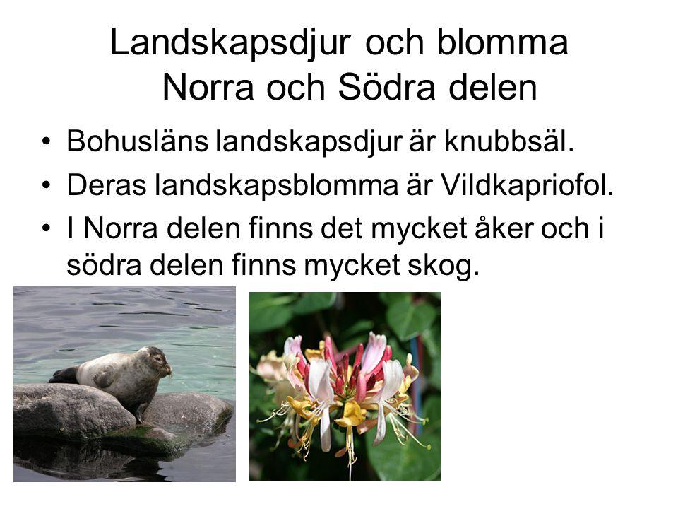 Landskapsdjur och blomma Norra och Södra delen