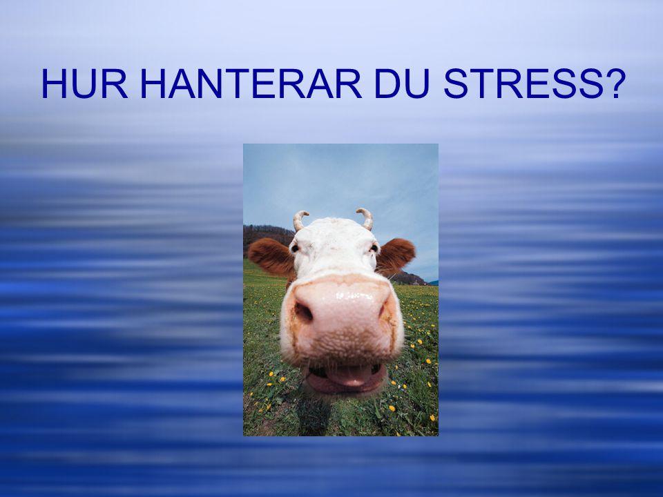 HUR HANTERAR DU STRESS