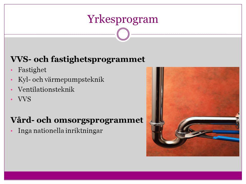 Yrkesprogram VVS- och fastighetsprogrammet Vård- och omsorgsprogrammet