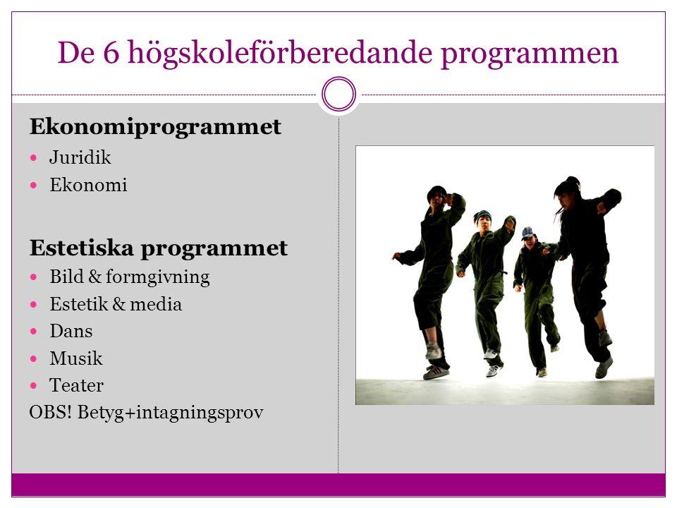 De 6 högskoleförberedande programmen