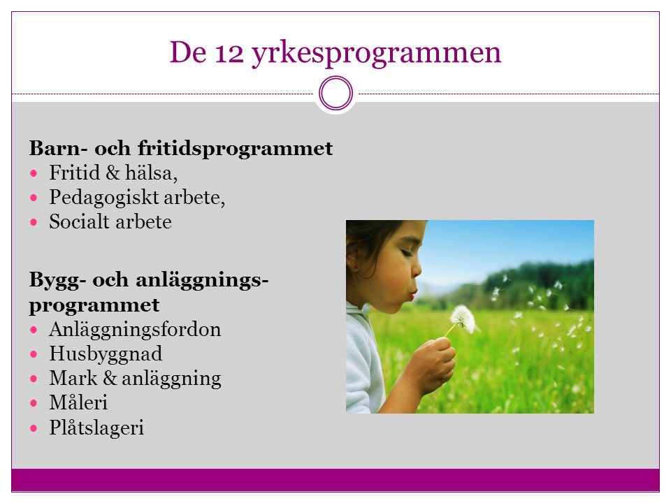 De 12 yrkesprogrammen Barn- och fritidsprogrammet Fritid & hälsa,