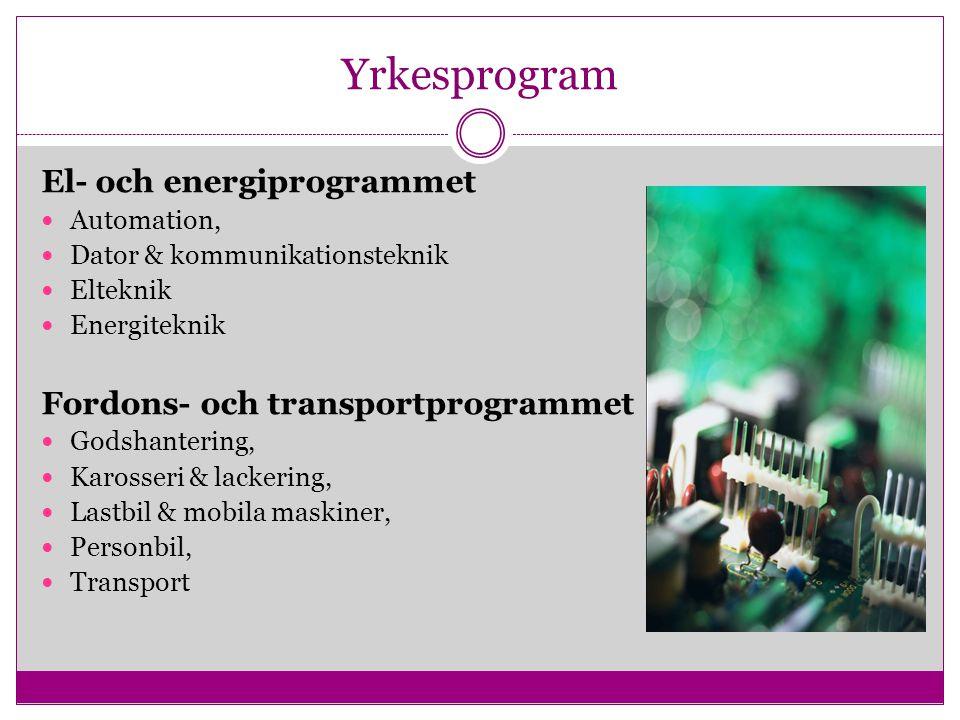 Yrkesprogram El- och energiprogrammet Fordons- och transportprogrammet