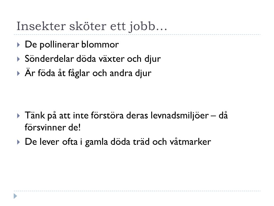Insekter sköter ett jobb…