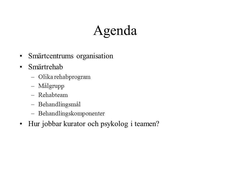 Agenda Smärtcentrums organisation Smärtrehab