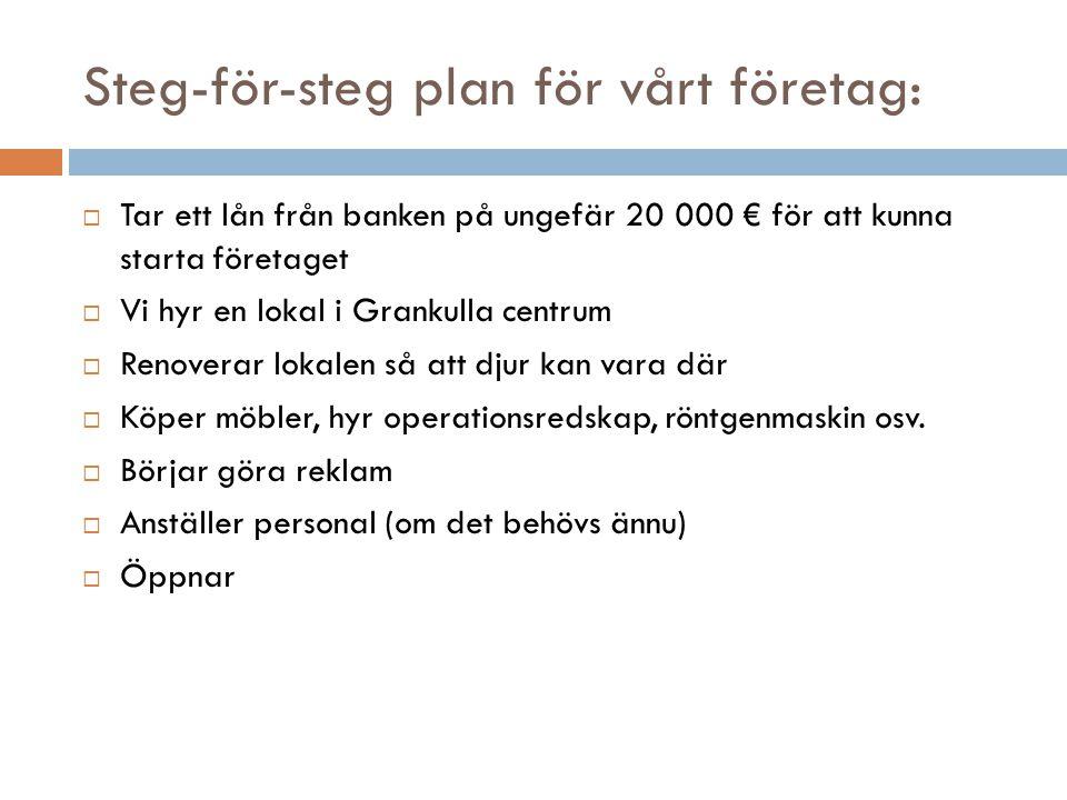 Steg-för-steg plan för vårt företag: