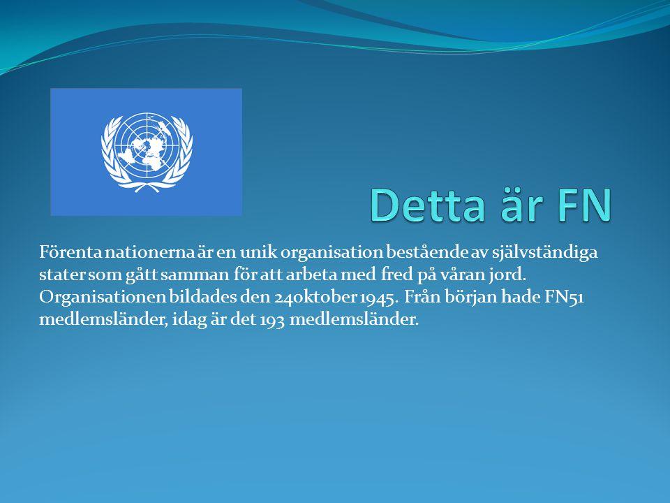 Detta är FN