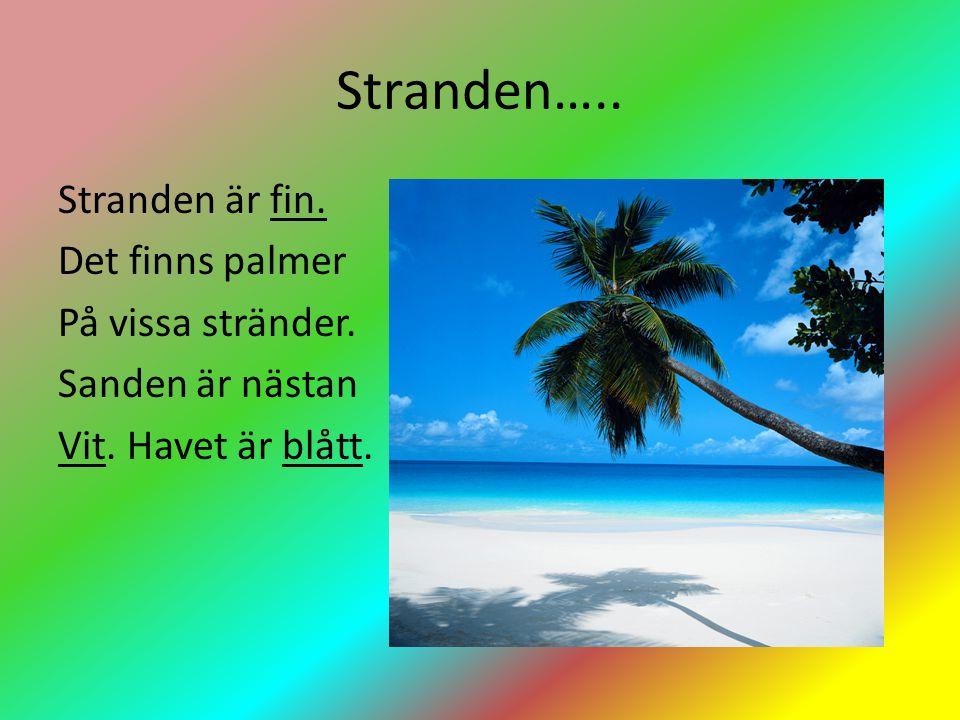 Stranden….. Stranden är fin. Det finns palmer På vissa stränder.