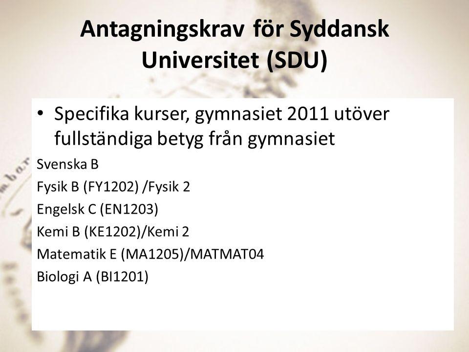 Antagningskrav för Syddansk Universitet (SDU)