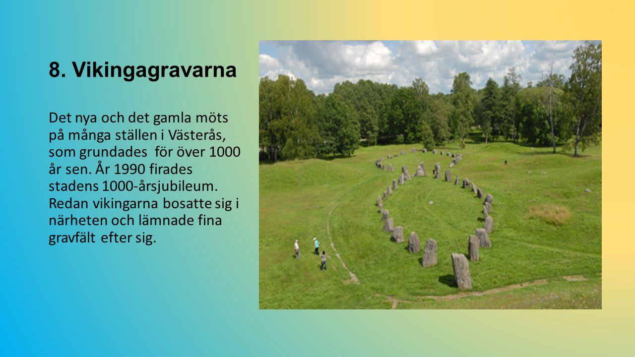 8. Vikingagravarna