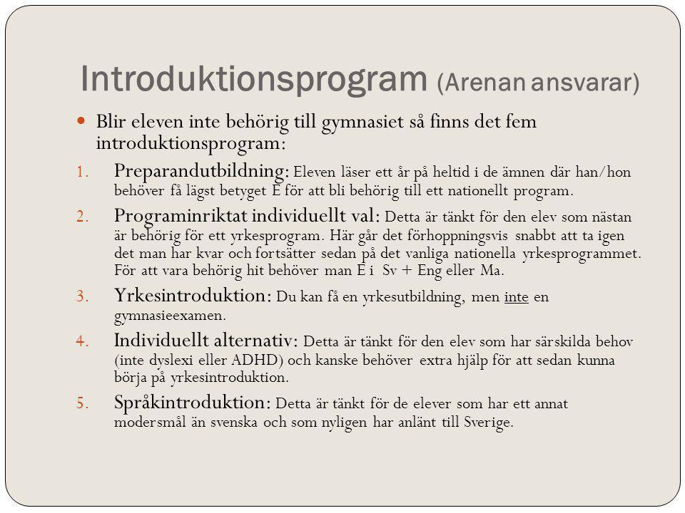 Introduktionsprogram (Arenan ansvarar)