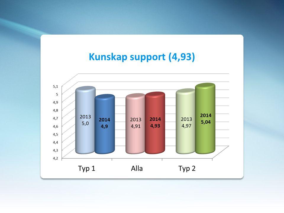 Kunskap support (4,93)