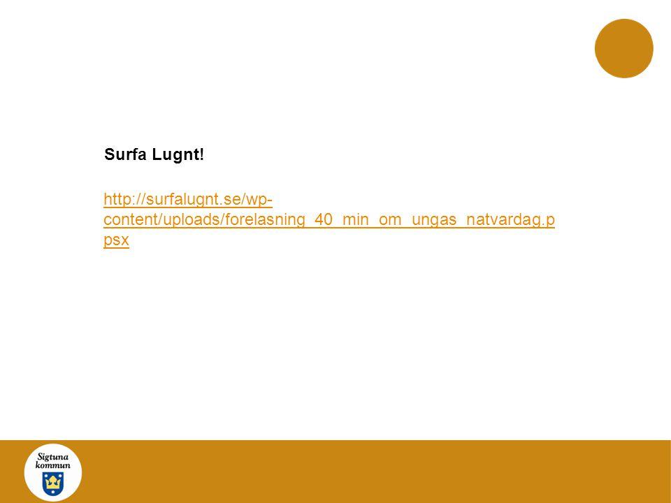 Surfa Lugnt! http://surfalugnt.se/wp-content/uploads/forelasning_40_min_om_ungas_natvardag.ppsx