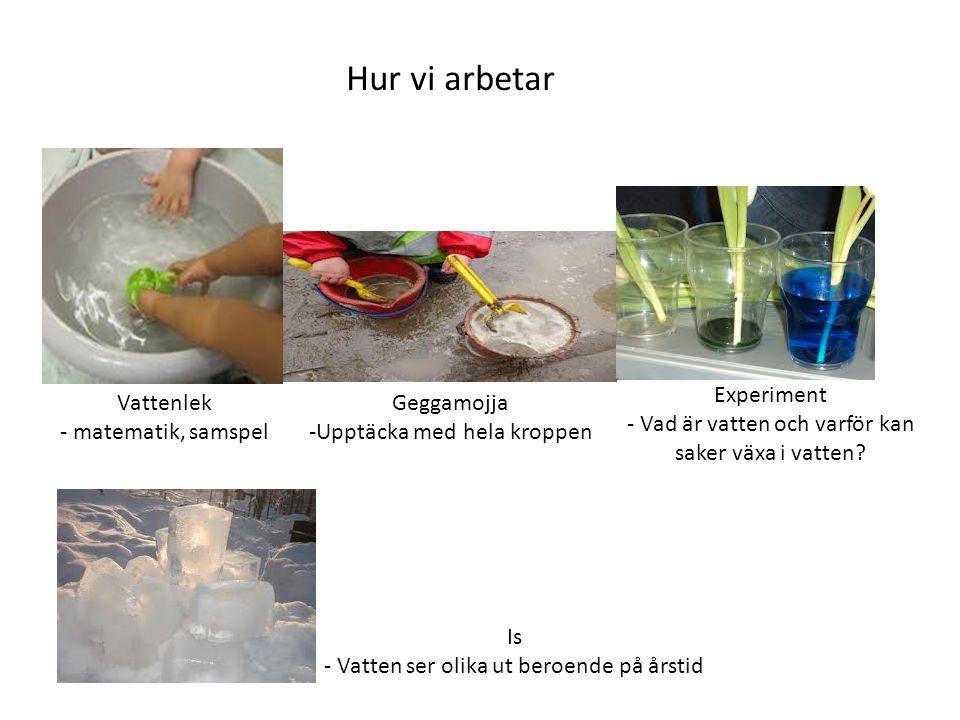 Hur vi arbetar Experiment