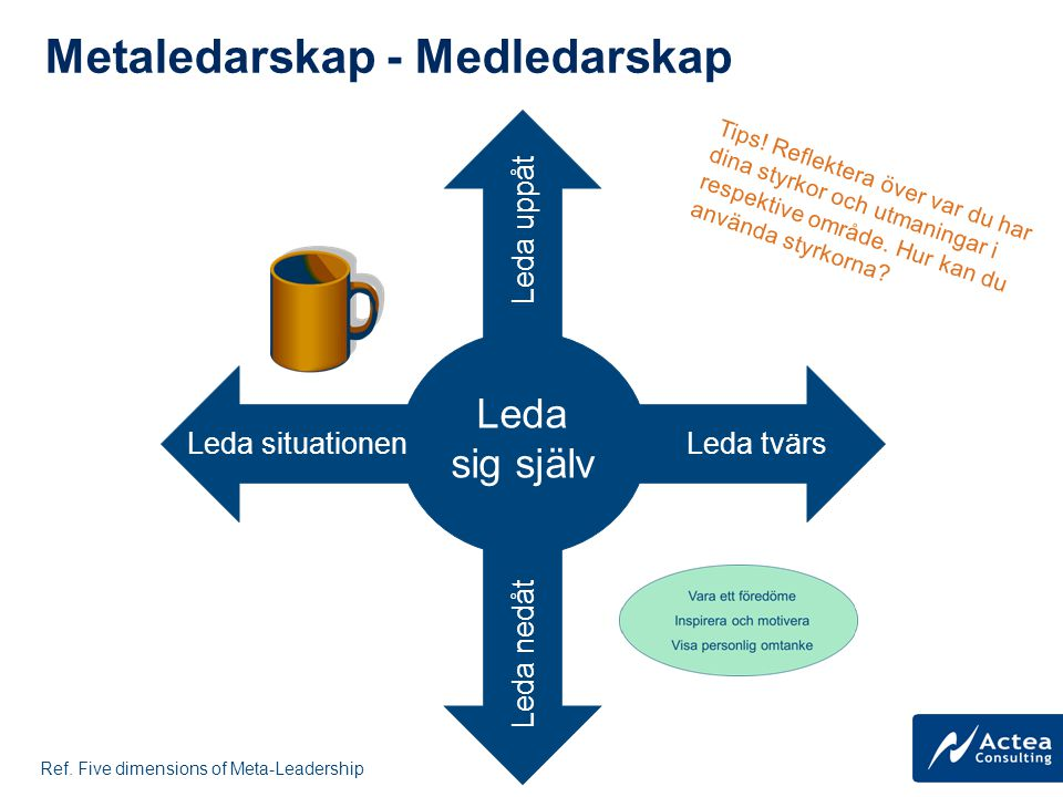 FIVE DIMENSIONS OF LEADERSHIP Förstå hela situationen
