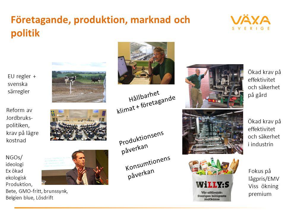 Företagande, produktion, marknad och politik