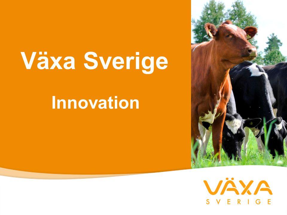 Växa Sverige Innovation