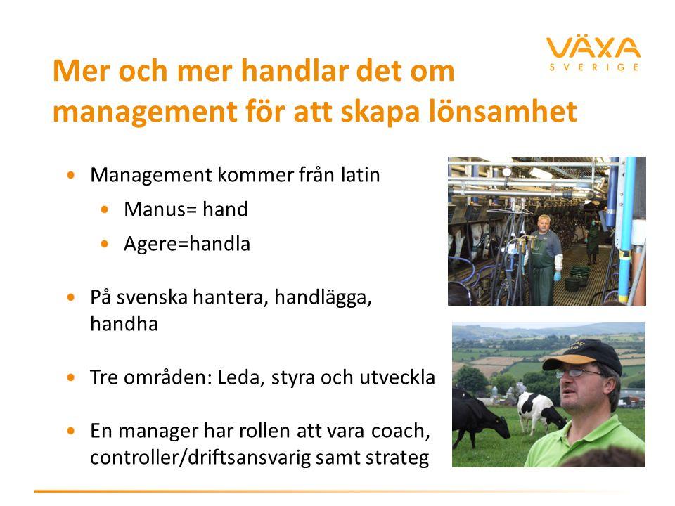 Mer och mer handlar det om management för att skapa lönsamhet