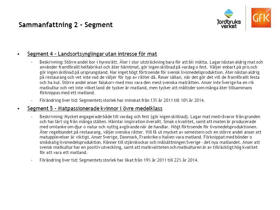 Sammanfattning 2 - Segment