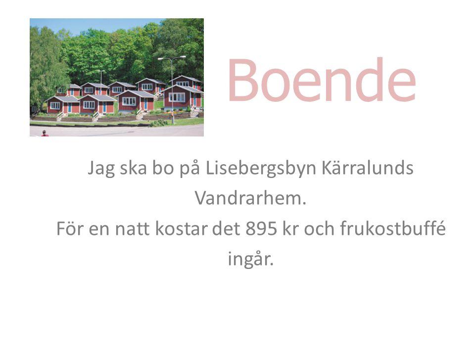 Boende Jag ska bo på Lisebergsbyn Kärralunds Vandrarhem.