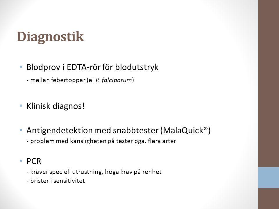 Diagnostik Blodprov i EDTA-rör för blodutstryk