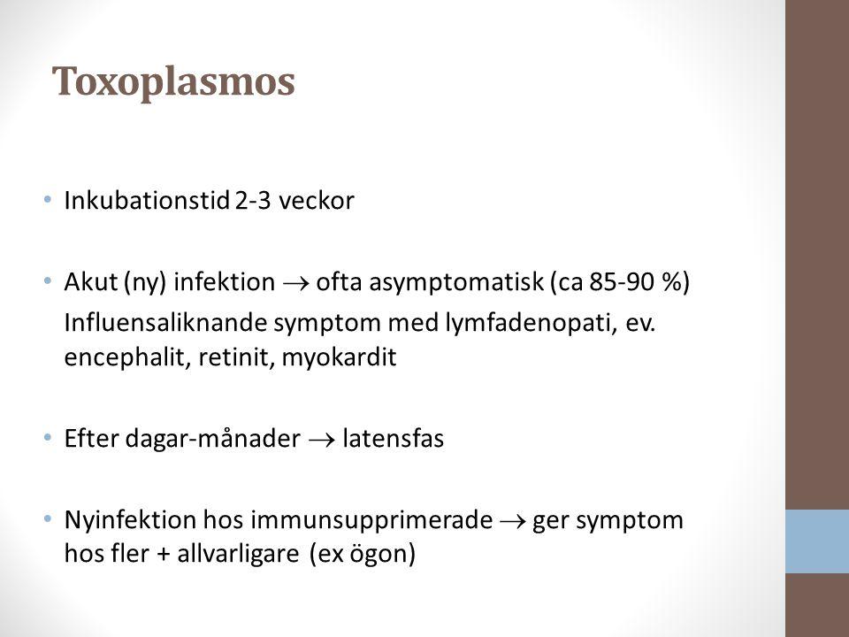 Toxoplasmos Inkubationstid 2-3 veckor