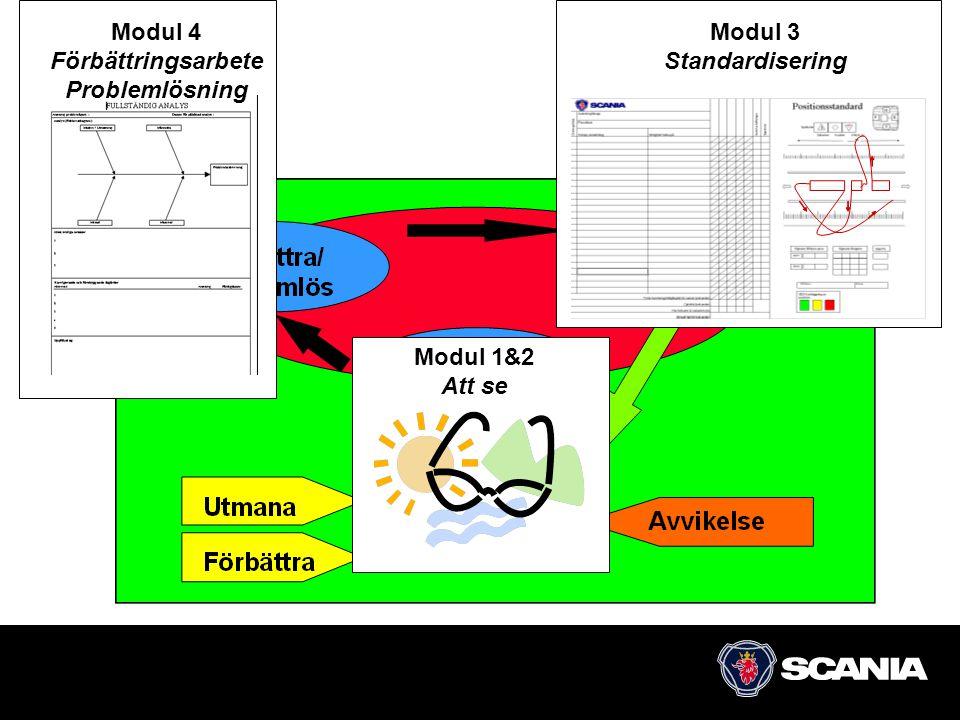 Modul 4 Förbättringsarbete Problemlösning Modul 3 Standardisering